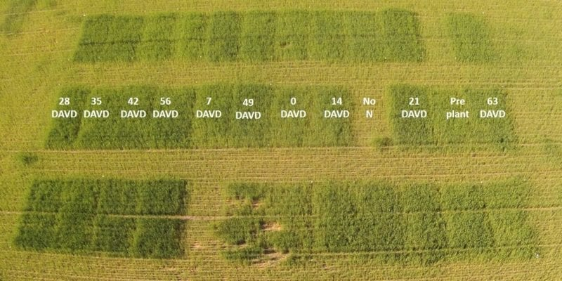 Maximizing Yield And Optimizing Protein For Your Wheat Crop